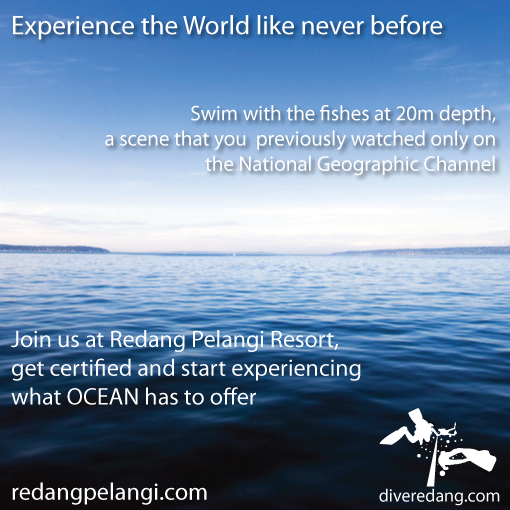 Learn Diving at Redang Pelangi Resort (diveredang.com)
